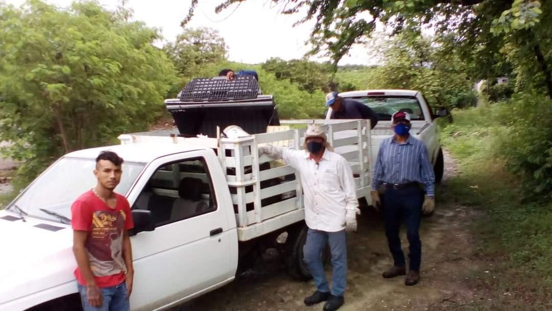 Doce toneladas de cacharros recolectadas en 8va. semana de saneamiento